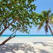 phu quoc island feature image