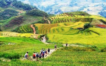Vietnam Nature Discovery