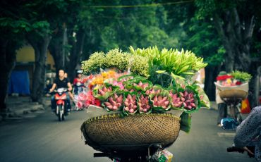 Top 7 Best Things to Do in Hanoi in 2020