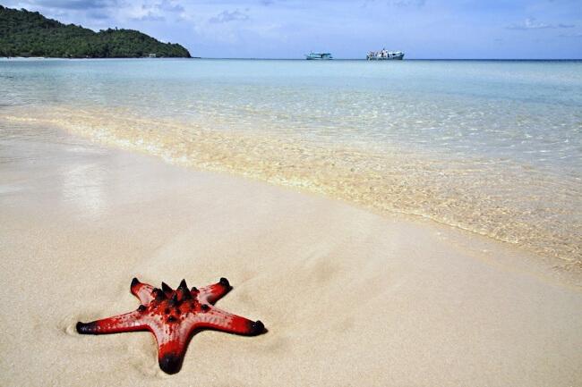 Beaches in Vietnam 1