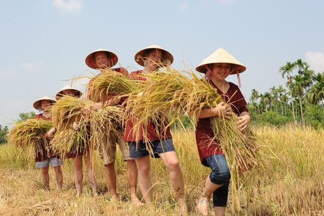 Vietnam Family tour 7
