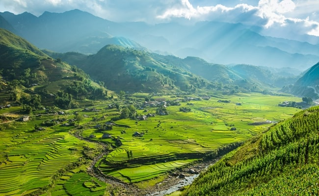 vietnam in december 10