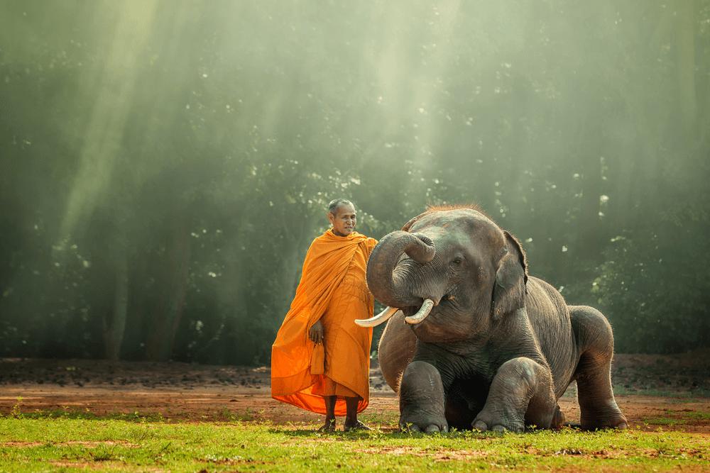 Siem Reap Cambodia 5