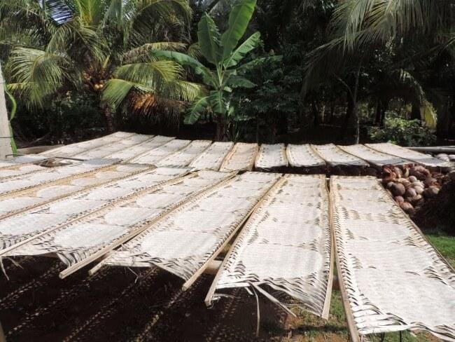 Mekong Delta Vietnam 16