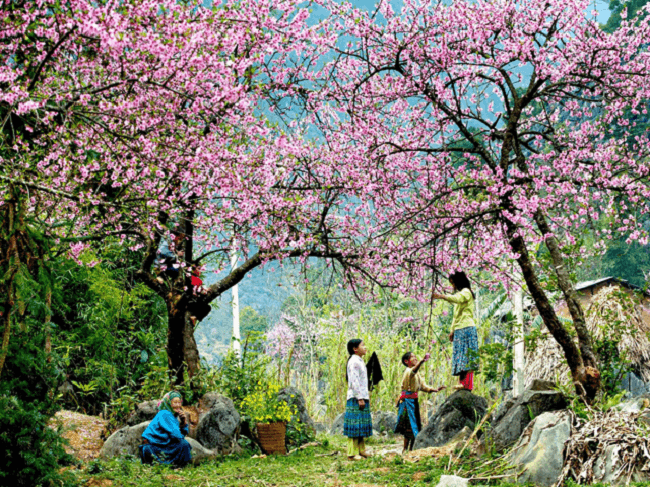 things to see and do in sapa 4