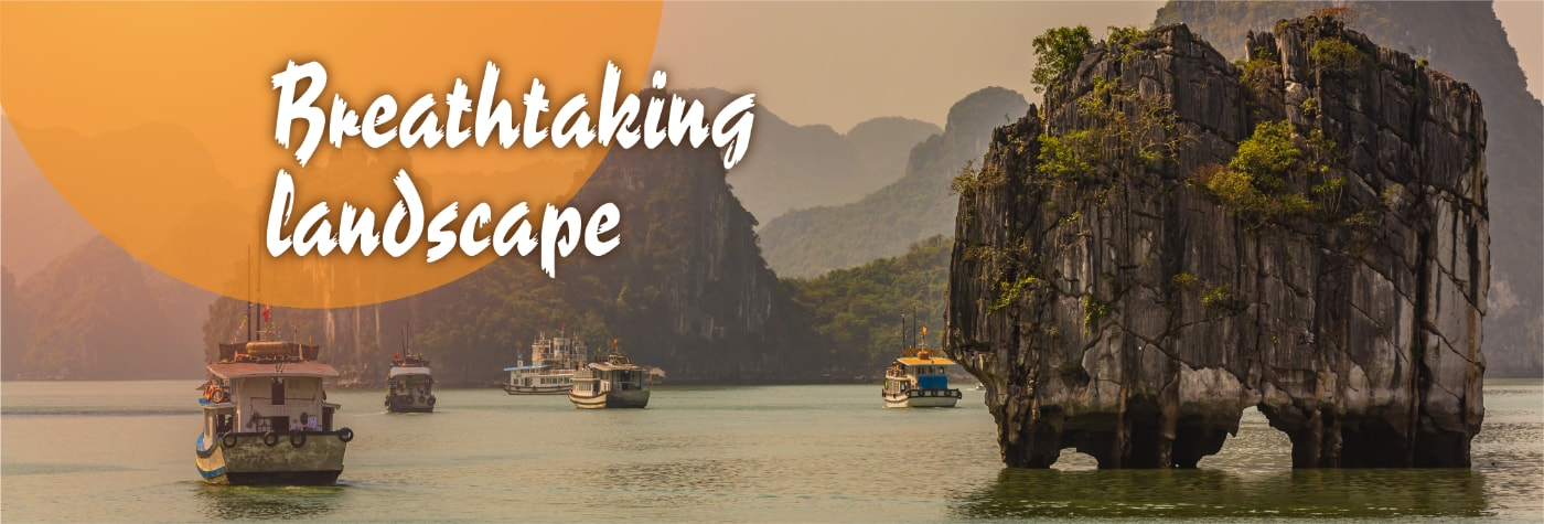 vietnam tour packages from south africa